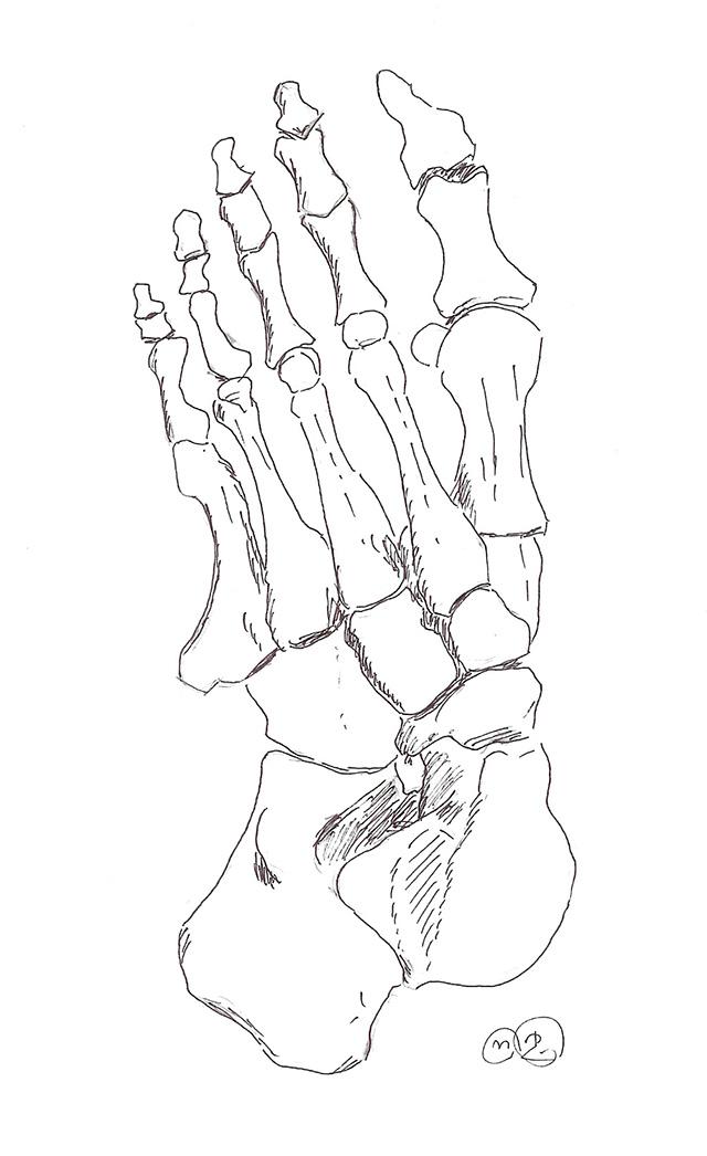 moveman_foot1s.jpg