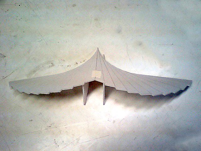 triangle_bird1.jpg