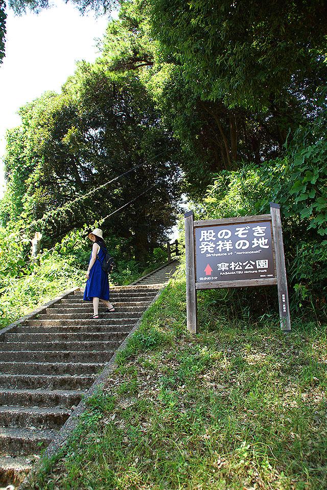 amanohashidate_startmatanozoki2.jpg
