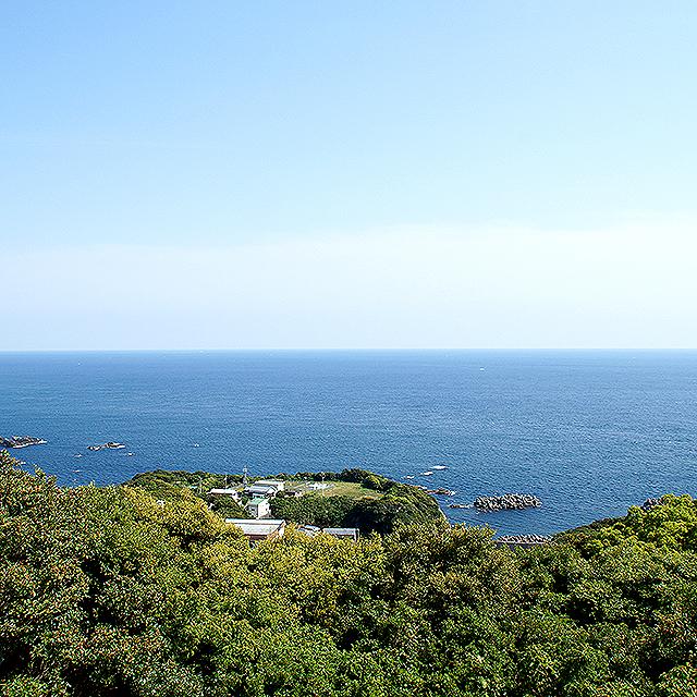 ashizuriterme_horizontalline2.jpg