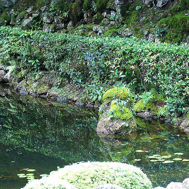 chikurinjigarden_pond2.jpg