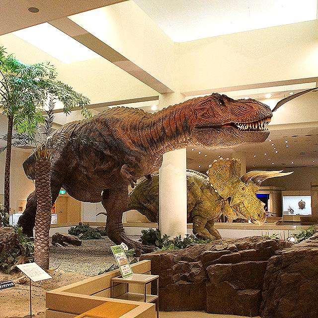 ehimekahaku_rex.jpg