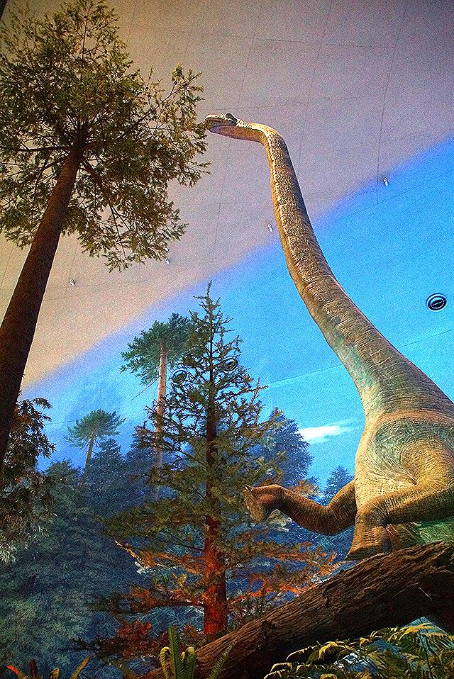 fpdm_sauropoda2.jpg