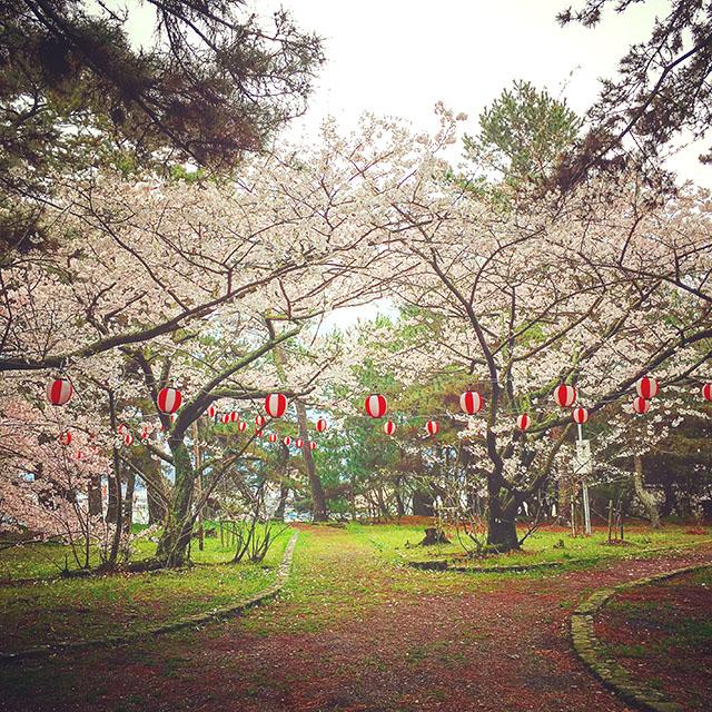 goshikihama_spring1.jpg