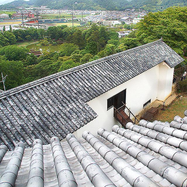 hikonejo_roof.jpg