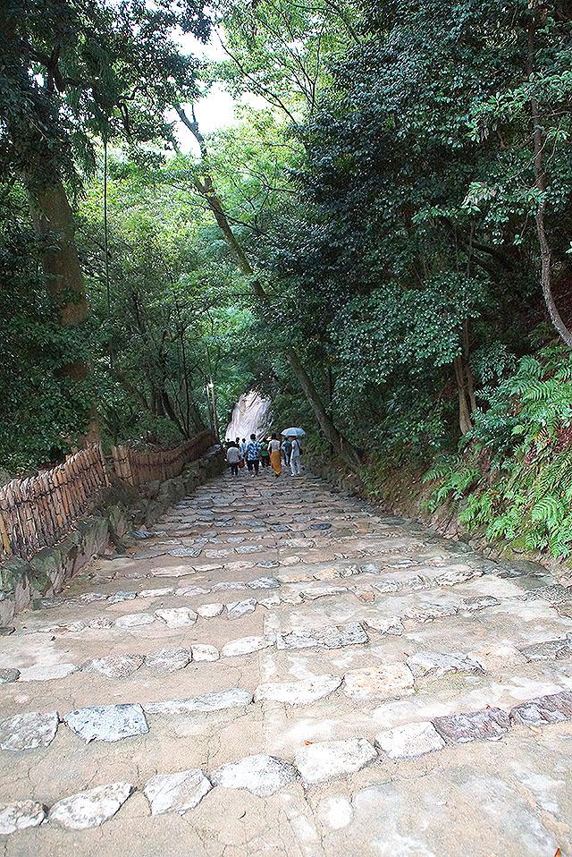 hikonejo_stair.jpg