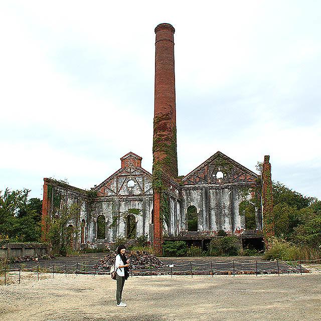 inujima_museum_plant.jpg