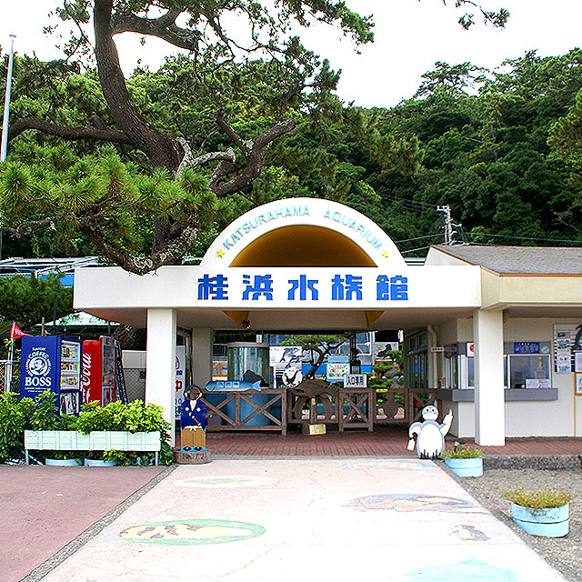 katsurahama_aquarium.jpg