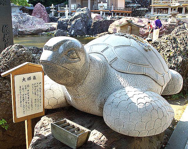 kongofukuji_turtle2.jpg