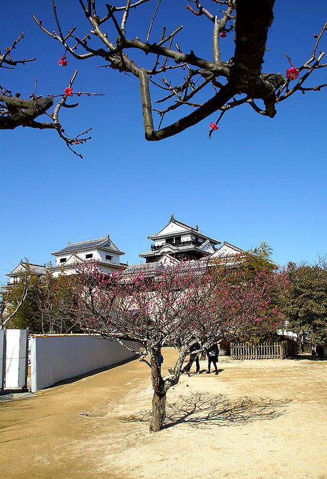 matsuyamajo_honmaru_facade2.jpg