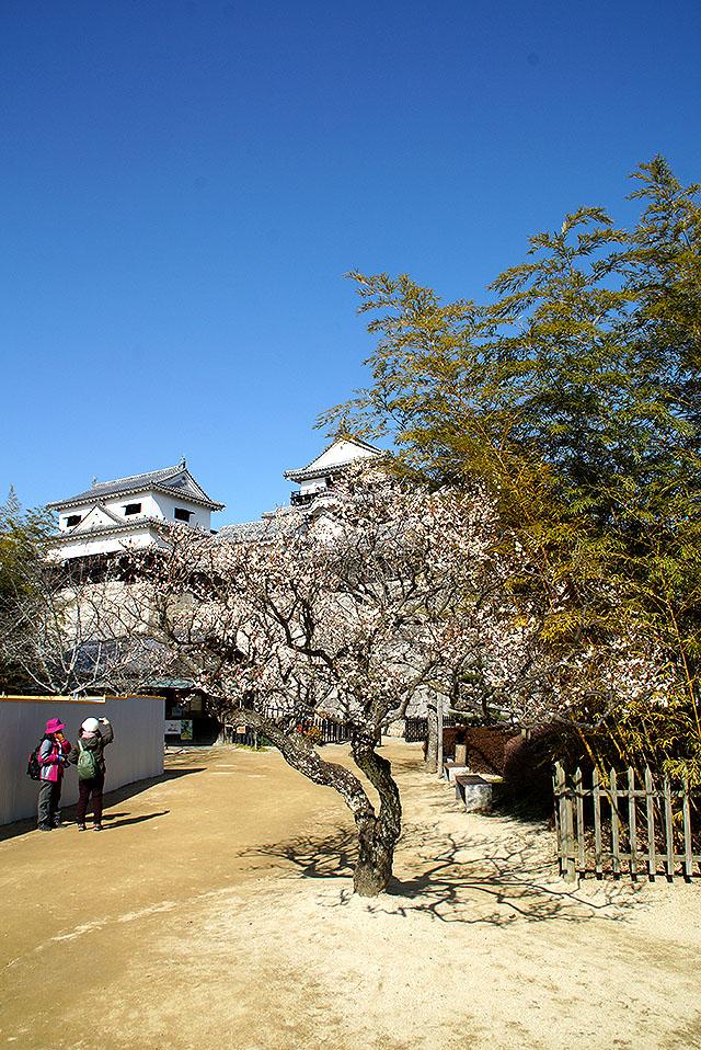 matsuyamajo_honmaru_facade3.jpg