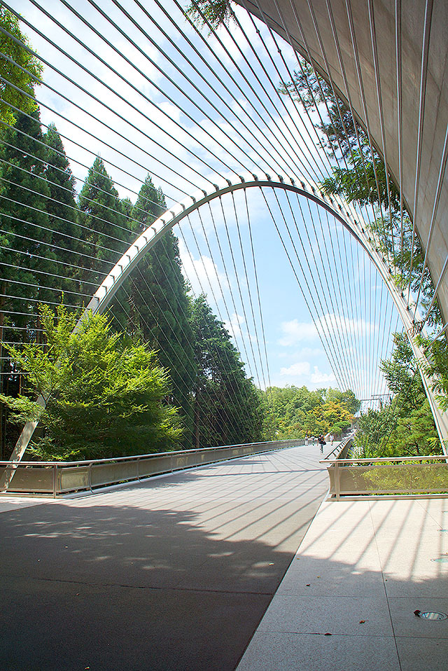 mihomuseum_bridge1.jpg