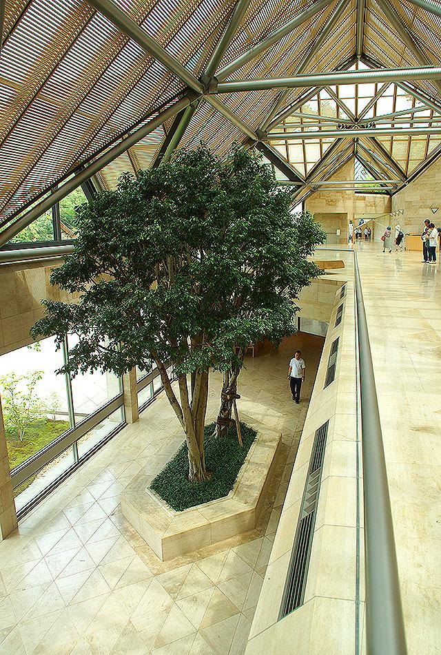 mihomuseum_tree.jpg