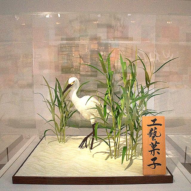 mitogei_fujimori6_4.jpg
