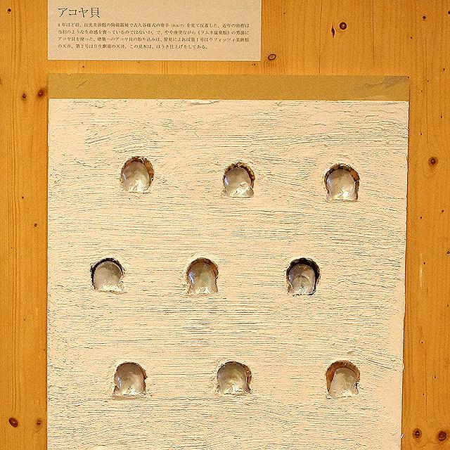 mitogei_fujimori7_13.jpg