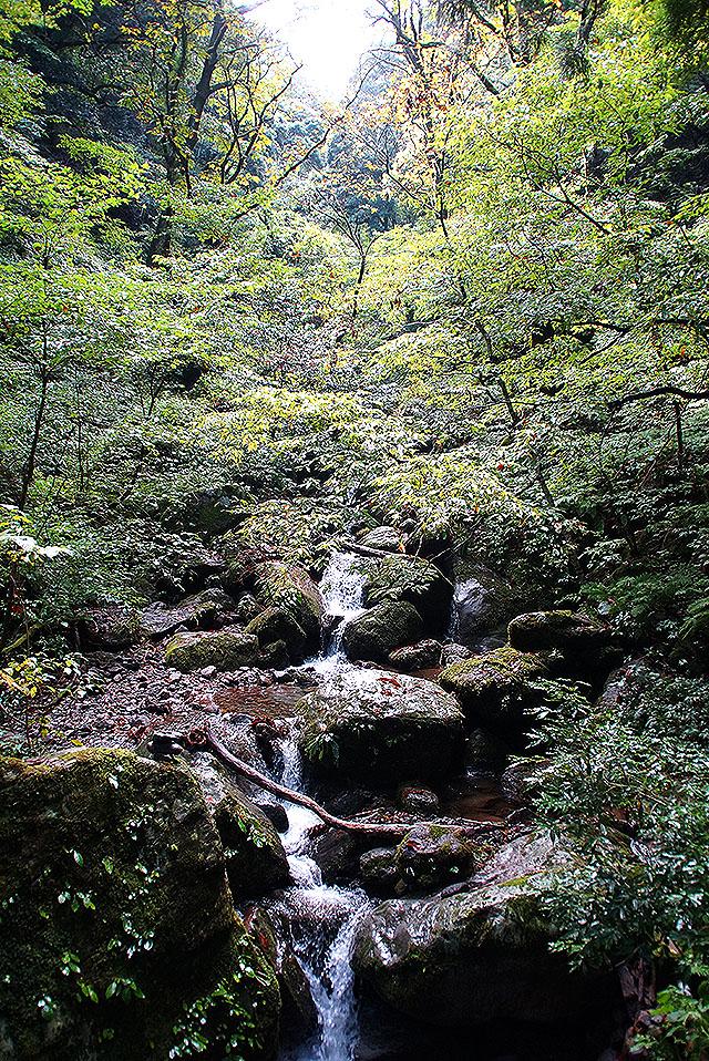 mitokusan2_03_yadoiribashi3.jpg