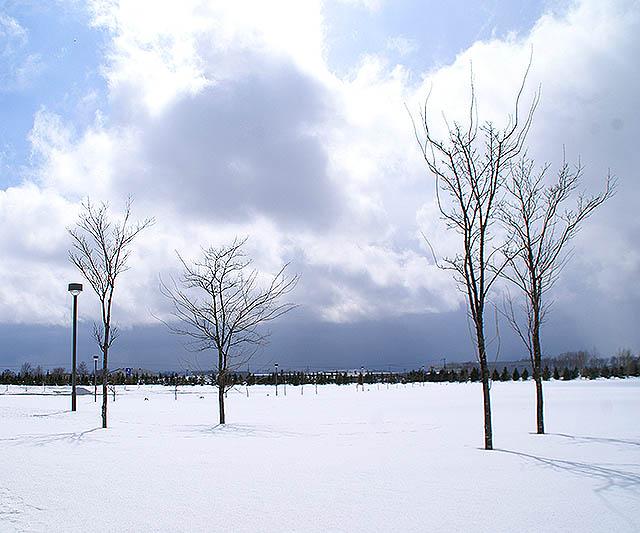 moerenuma_snowfield1a.jpg