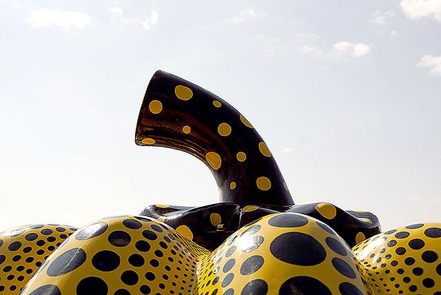 naoshima_benesse_yellowpumpkin5.jpg