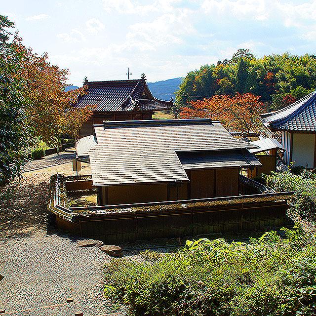 omuraji_mirei_chashitsu2.jpg