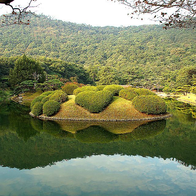 ritsurinpark_koitsutsuji.jpg