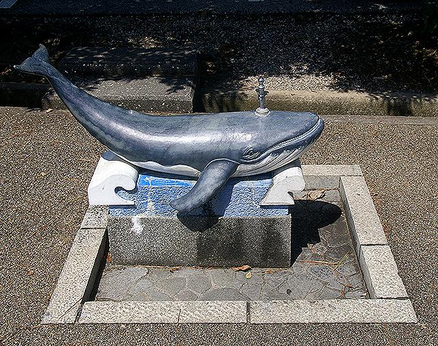 ryomam_whalewaters2.jpg