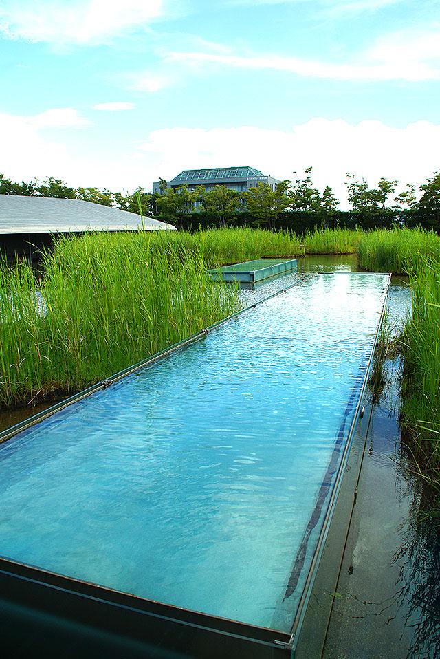 sagawamuseum_water.jpg