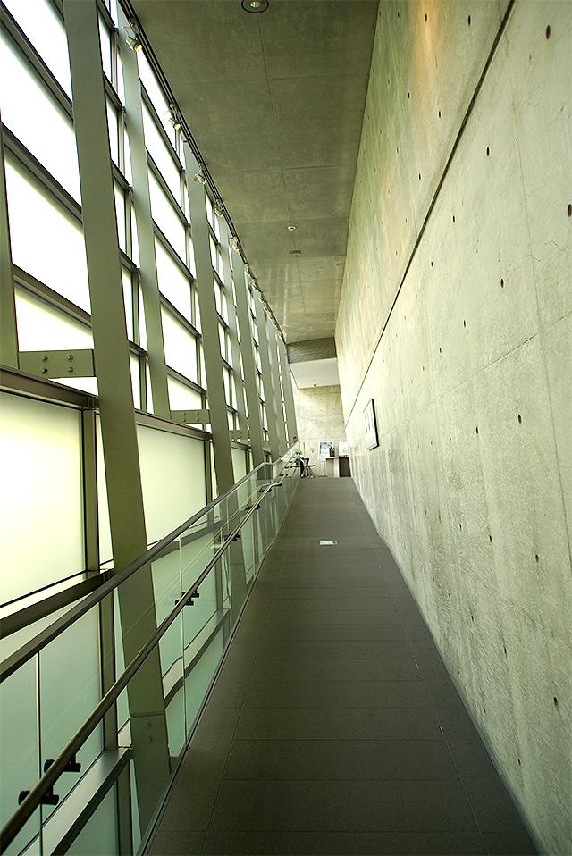 sakakumomuseum_path1.jpg