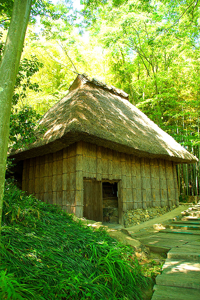 shikokumura_kouzohouse.jpg