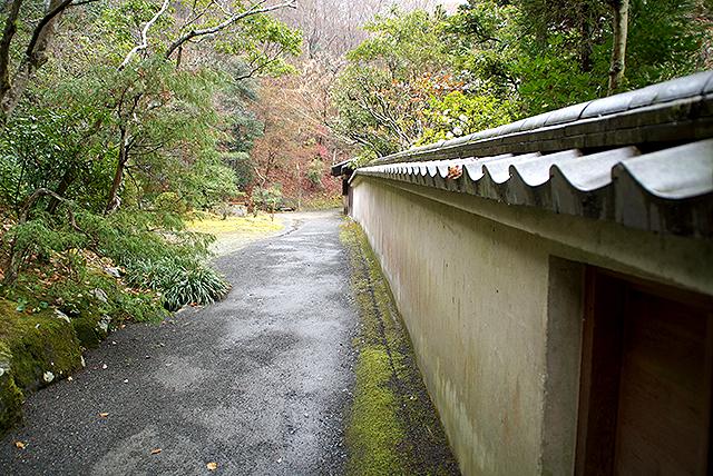 shinshoji_shuroken1.jpg