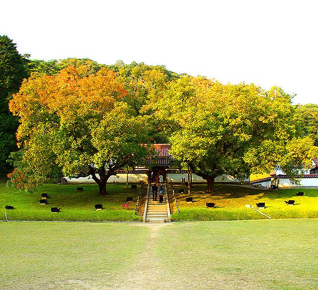 shizutanischool_seibyou1a.jpg