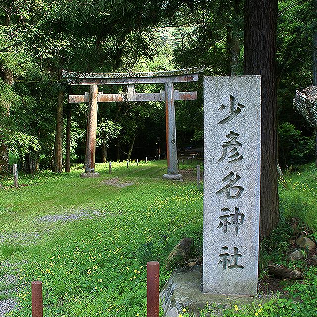 sukuhikona_torii1.jpg