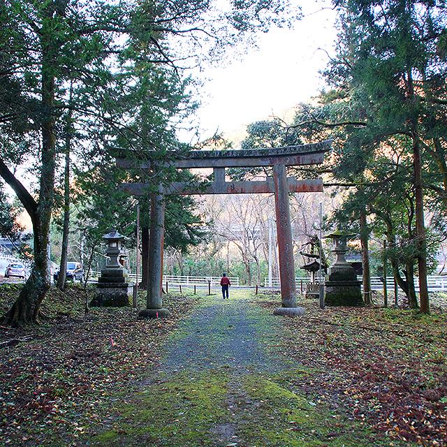 sukuhikona_torii2.jpg