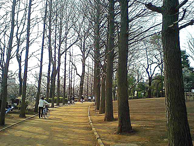 tcgm02_hanekipark3.jpg