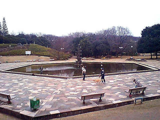 tcgm02_setagayapark.jpg