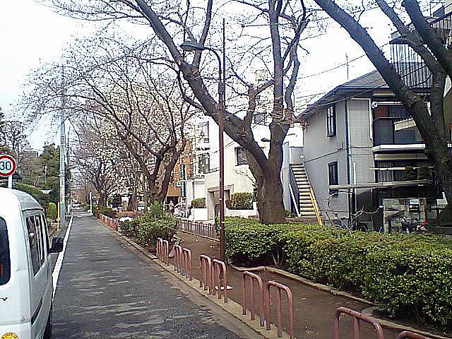 tcgm03_toritsudai_north.jpg