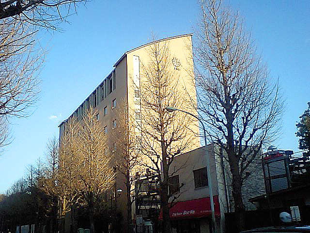 tcgm06_nihonjoshidai.jpg
