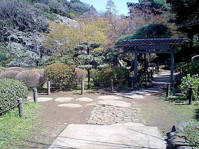 tcgm06_shinedogawapark.jpg