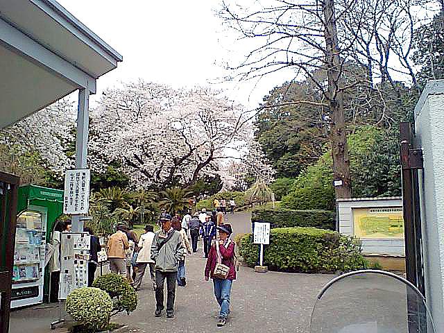tcgm07_koishikawa_shokubutsuen.jpg