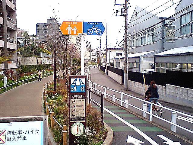 tcgm08_megurogawa_ryokudo.jpg