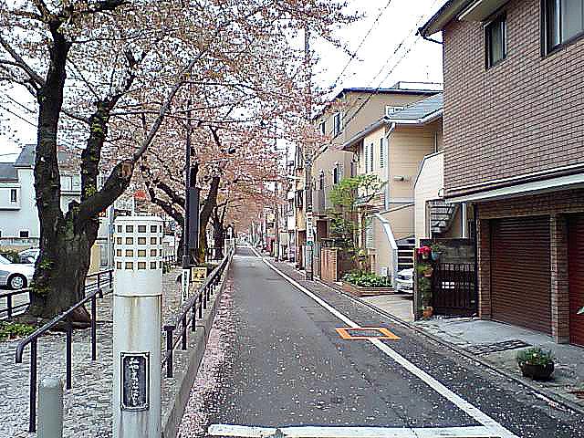 tcgm08_tachiaigawaryokudo.jpg