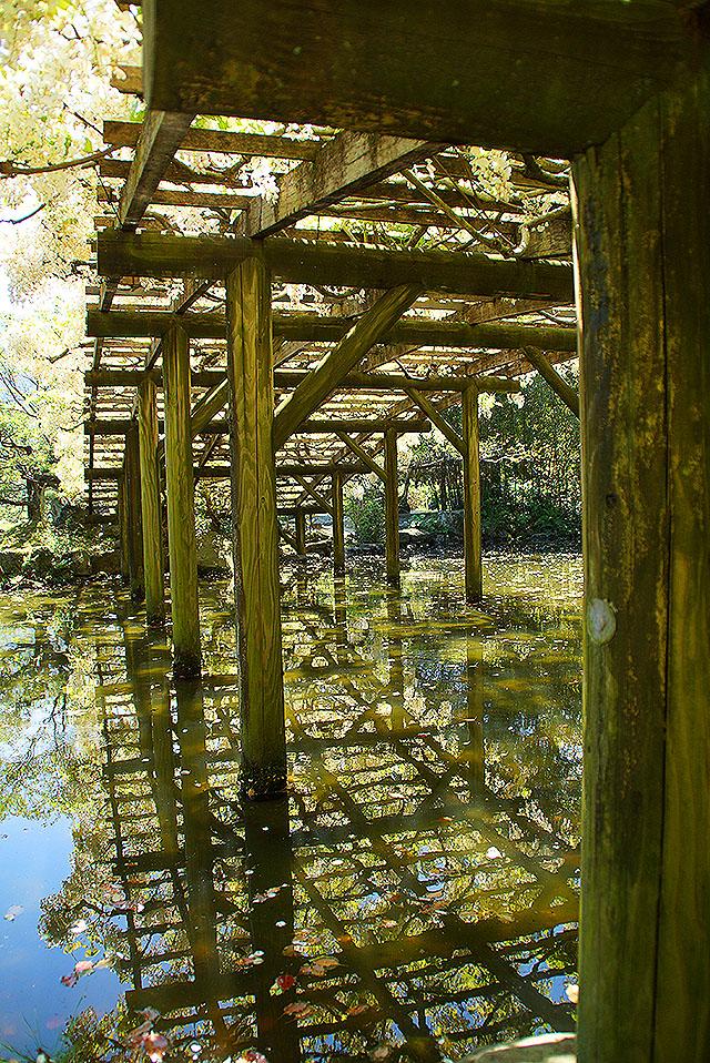 tenshaen_bridge_spring.jpg
