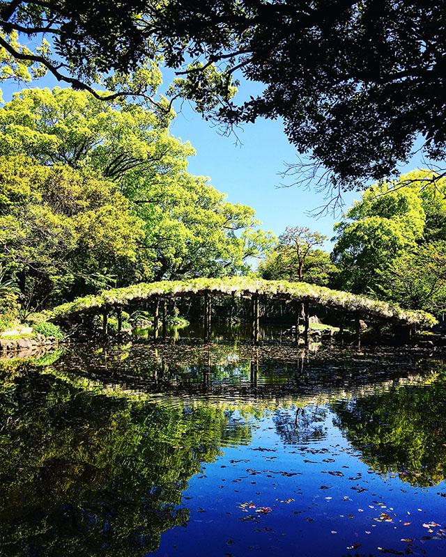 tenshaen_spring2.jpg