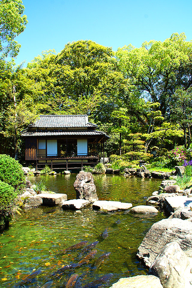 tenshaen_spring5.jpg
