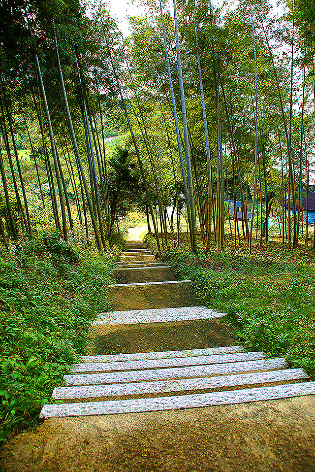 toyoshima_stair.jpg