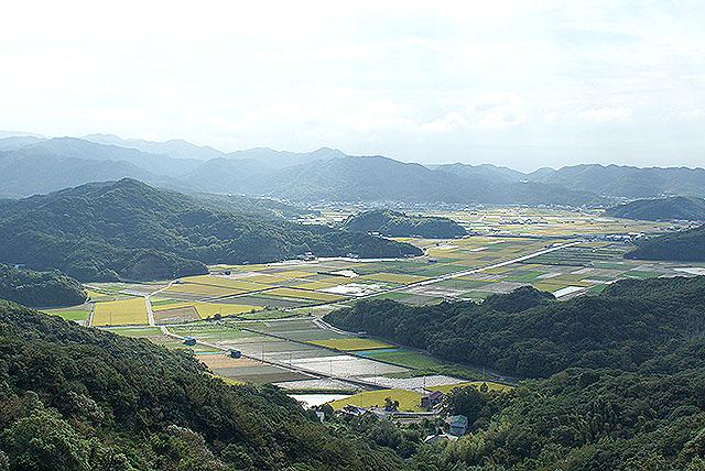 wakodo_mountainview.jpg