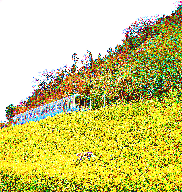 yellow_train.jpg