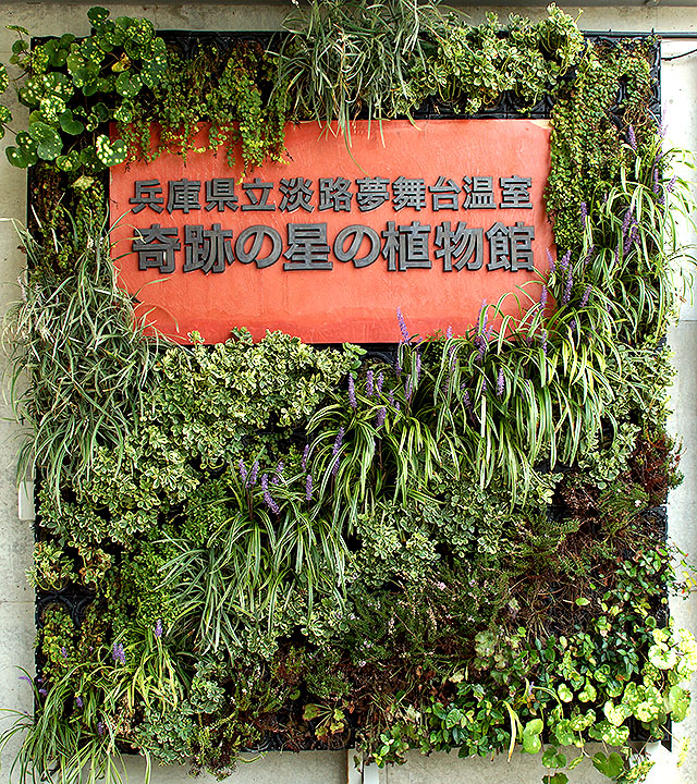yumebutai_botanicalgarden2.jpg