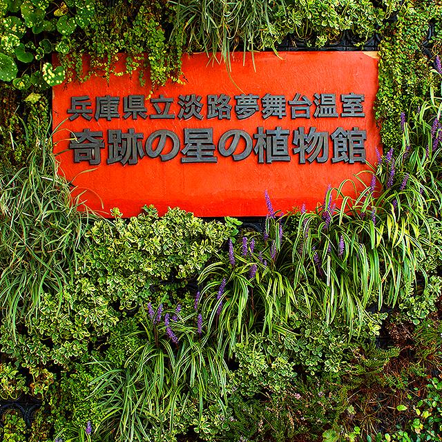 yumebutai_botanicalgarden2a.jpg