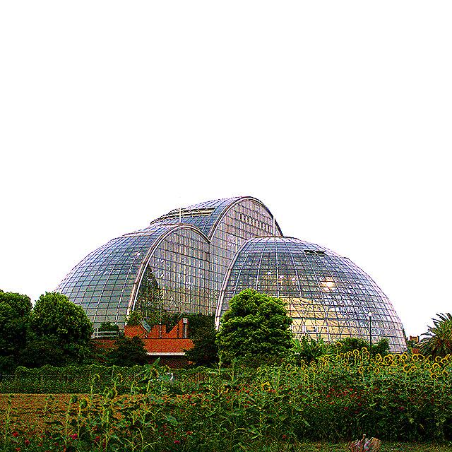 yumenoshimaplants_dome1a.jpg