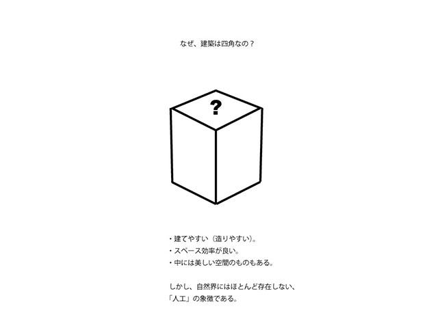 basicjudge1_2.jpg